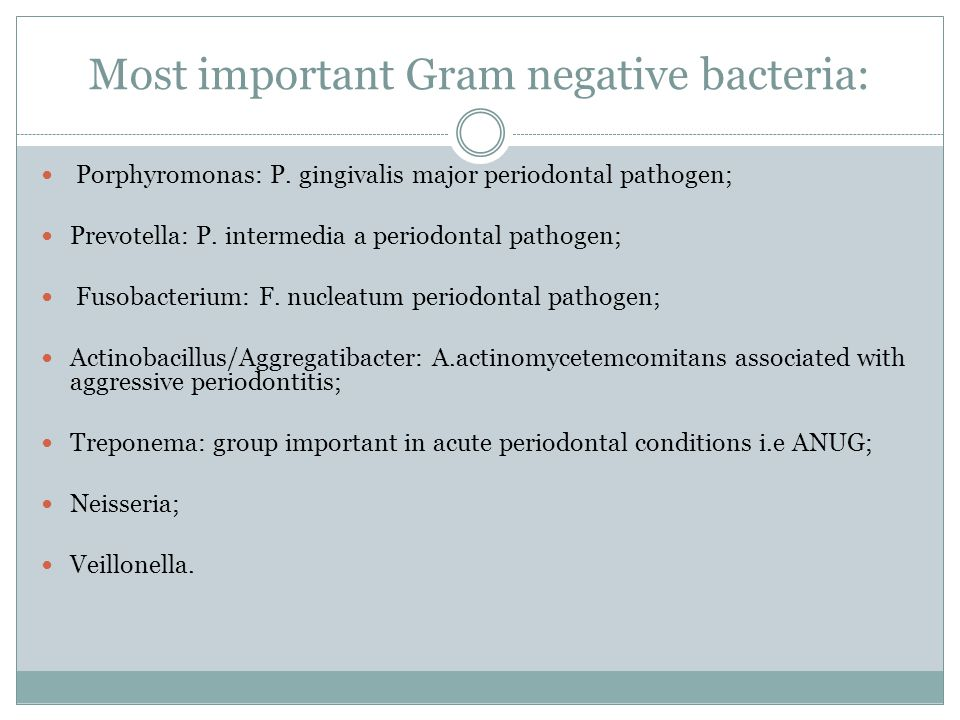 Most important Gram negative bacteria:
