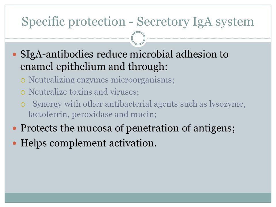 Specific protection - Secretory IgA system