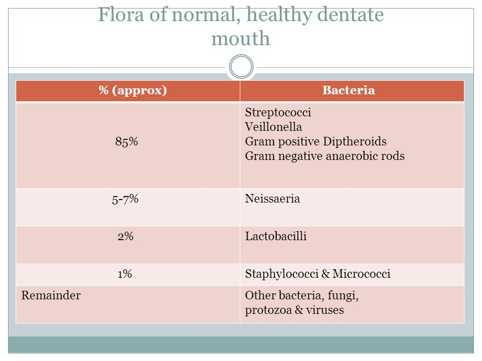 Flora of normal, healthy dentate mouth
