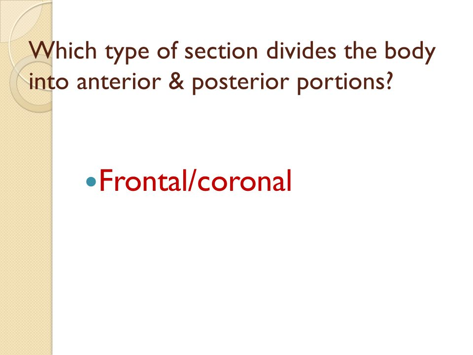 Which type of section divides the body into anterior & posterior portions