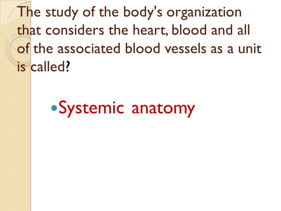 The study of the body s organization that considers the heart, blood and all of the associated blood vessels as a unit is called
