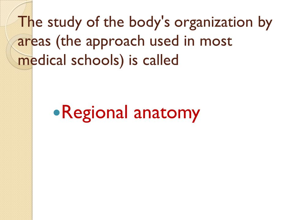 The study of the body s organization by areas (the approach used in most medical schools) is called