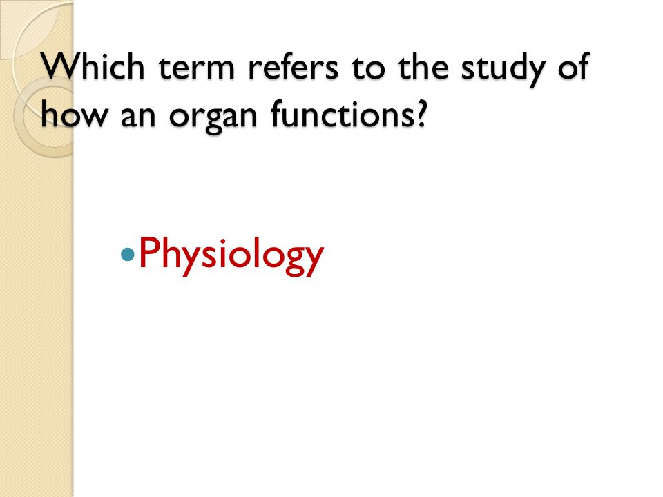 Which term refers to the study of how an organ functions