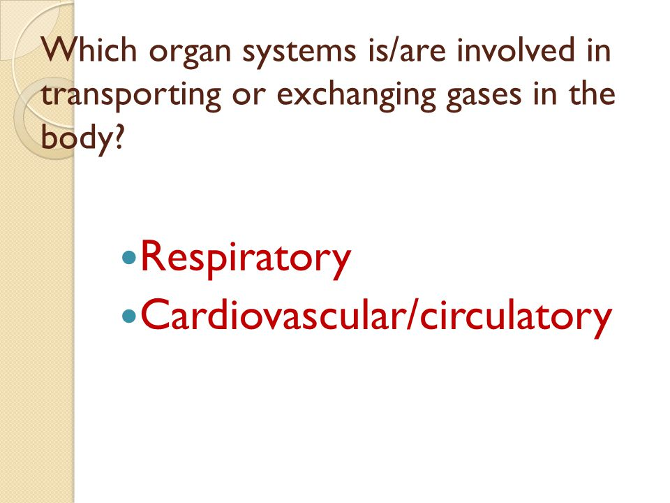 Cardiovascular/circulatory