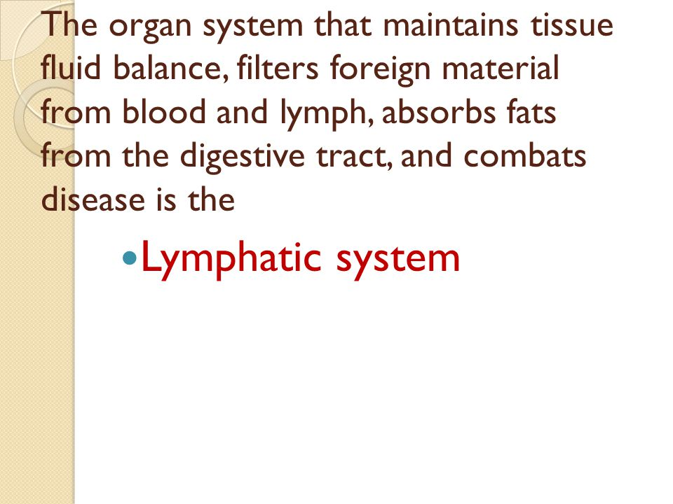 The organ system that maintains tissue fluid balance, filters foreign material from blood and lymph, absorbs fats from the digestive tract, and combats disease is the