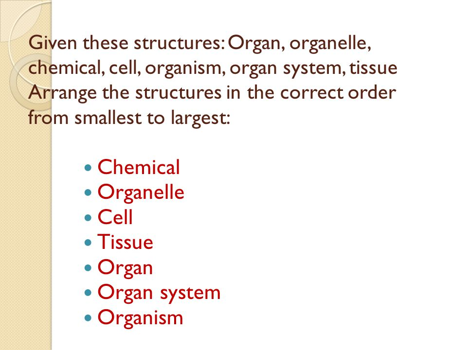 Chemical Organelle Cell Tissue Organ Organ system Organism