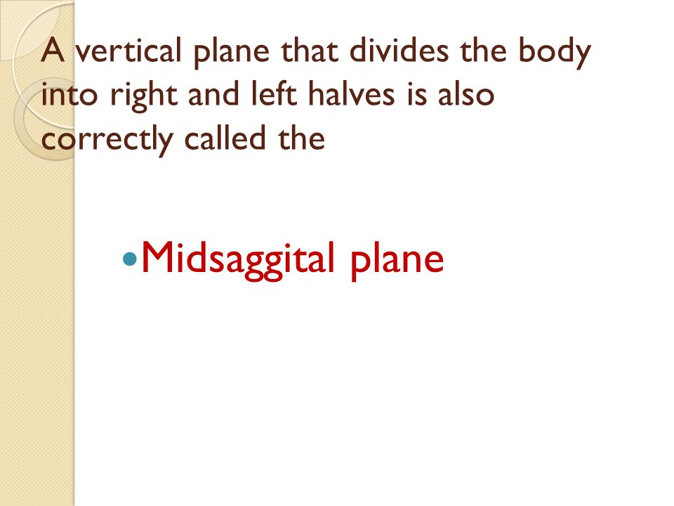 A vertical plane that divides the body into right and left halves is also correctly called the