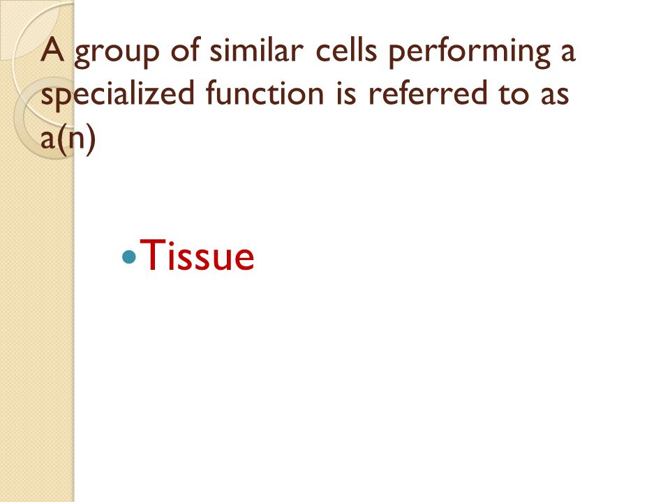 A group of similar cells performing a specialized function is referred to as a(n)