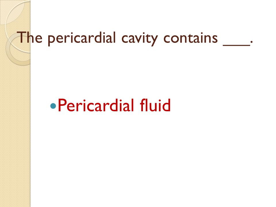 The pericardial cavity contains ___.