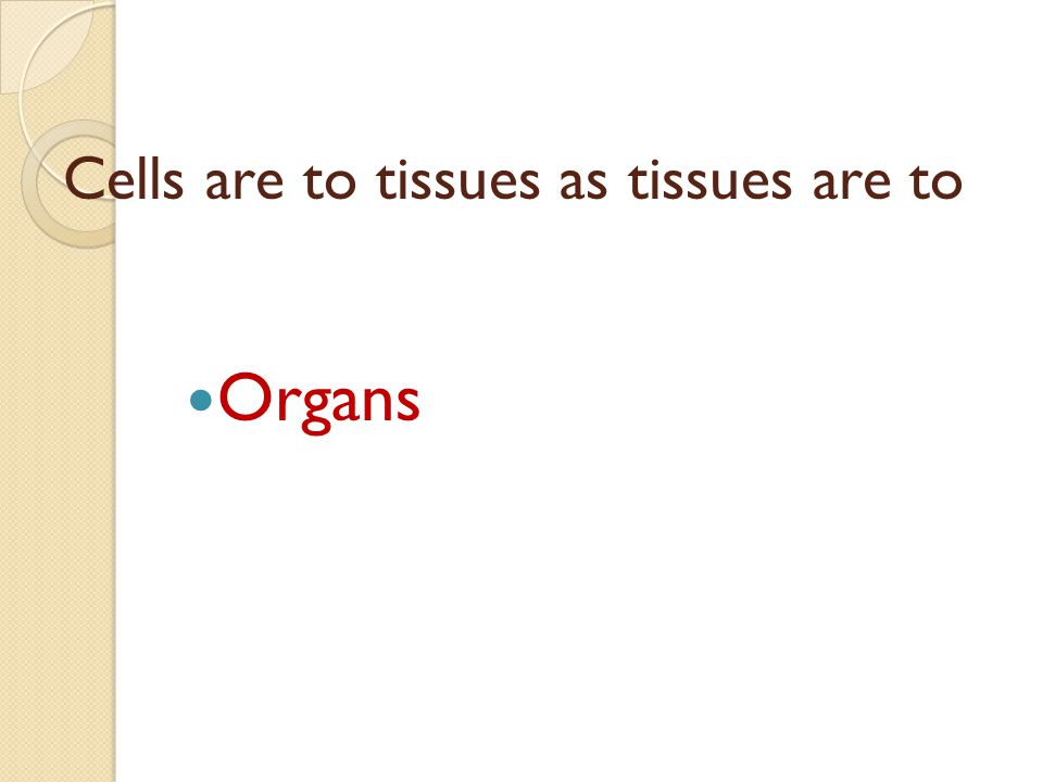 Cells are to tissues as tissues are to