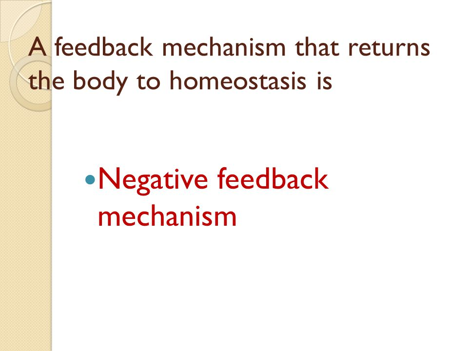 A feedback mechanism that returns the body to homeostasis is