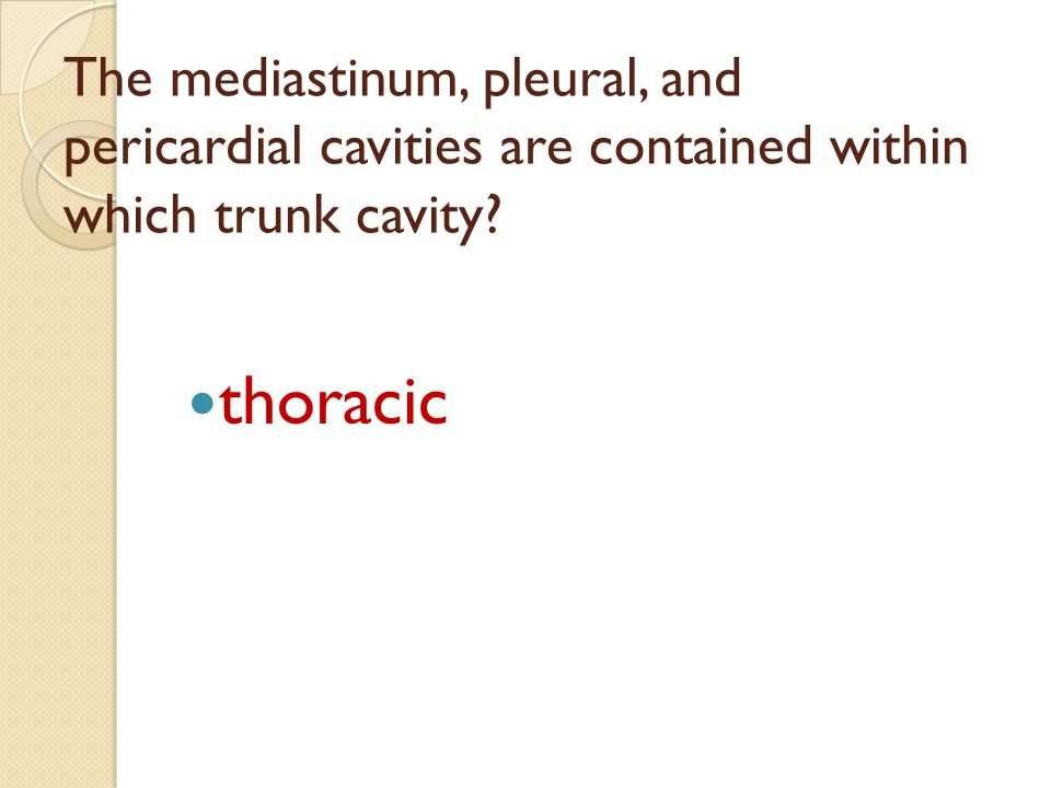 The mediastinum, pleural, and pericardial cavities are contained within which trunk cavity