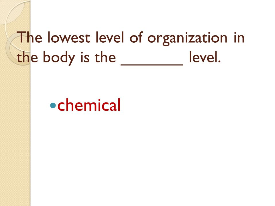 The lowest level of organization in the body is the _______ level.
