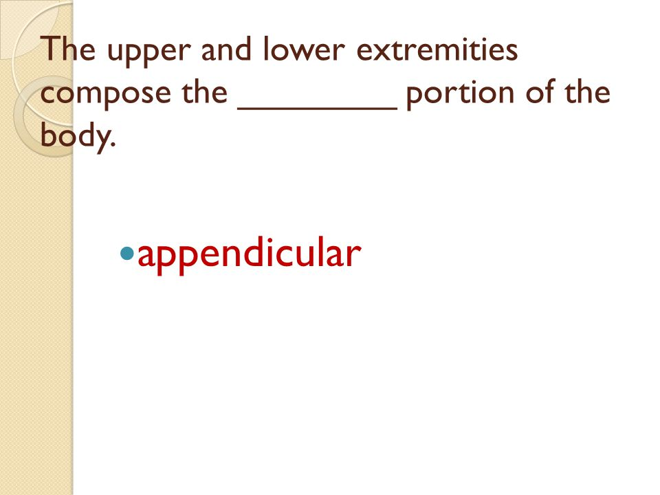 The upper and lower extremities compose the ________ portion of the body.