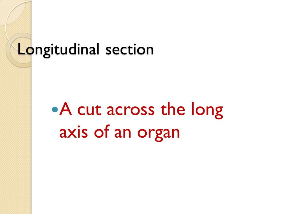 A cut across the long axis of an organ
