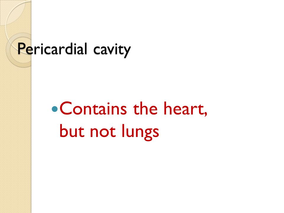 Contains the heart, but not lungs