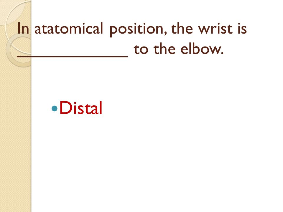 In atatomical position, the wrist is ____________ to the elbow.