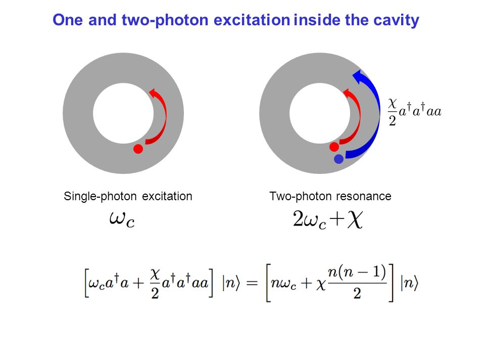 One and two-photon excitation inside the cavity