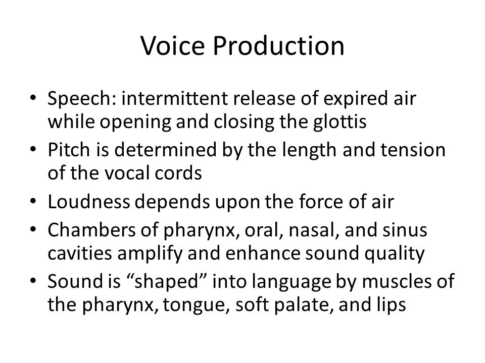 Voice Production Speech: intermittent release of expired air while opening and closing the glottis.