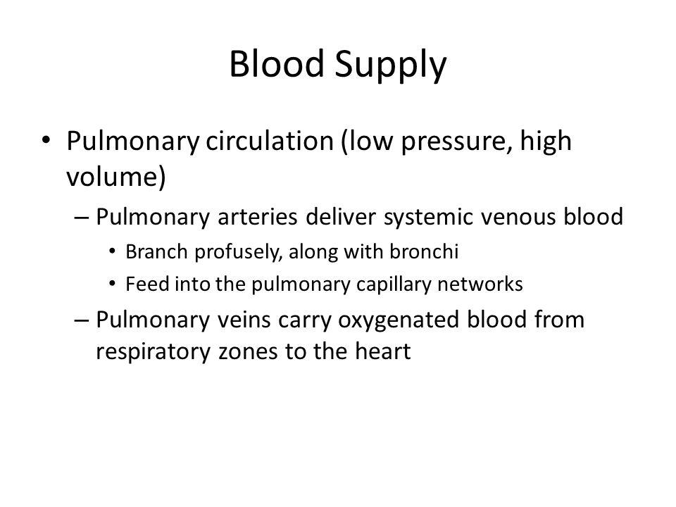 Blood Supply Pulmonary circulation (low pressure, high volume)