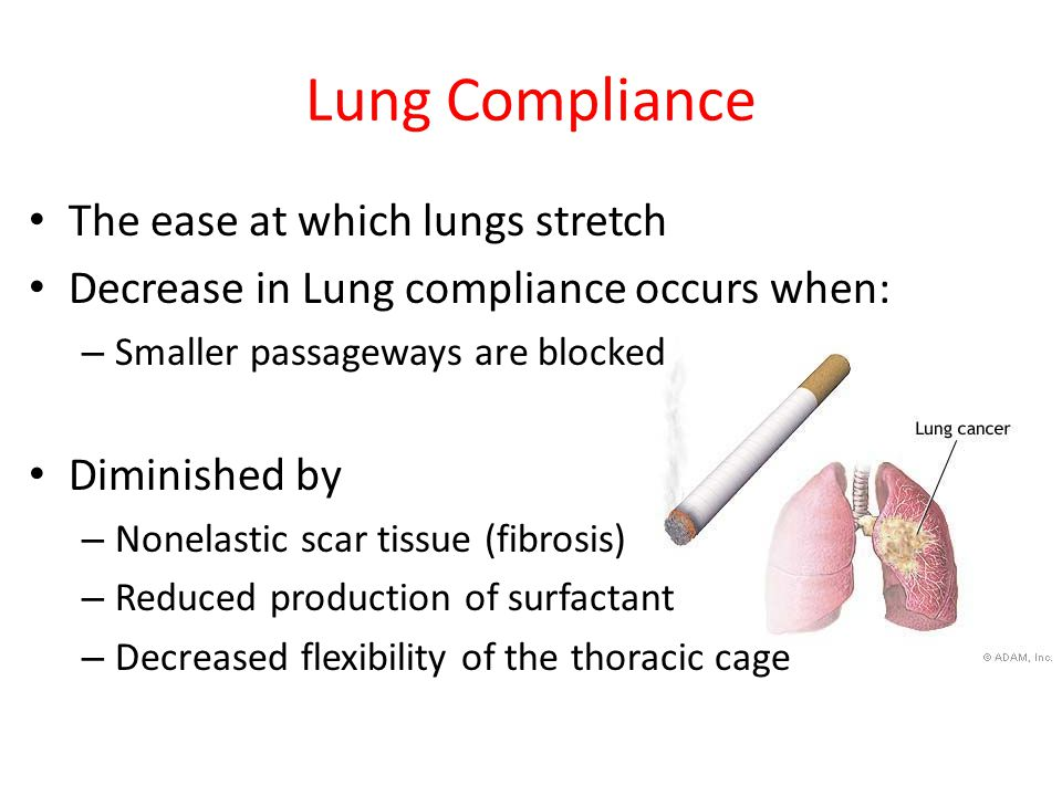 Lung Compliance The ease at which lungs stretch