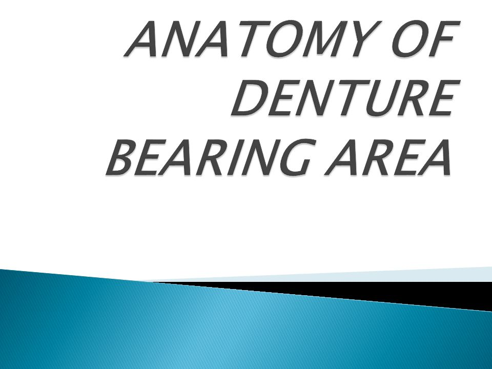 ANATOMY OF DENTURE BEARING AREA