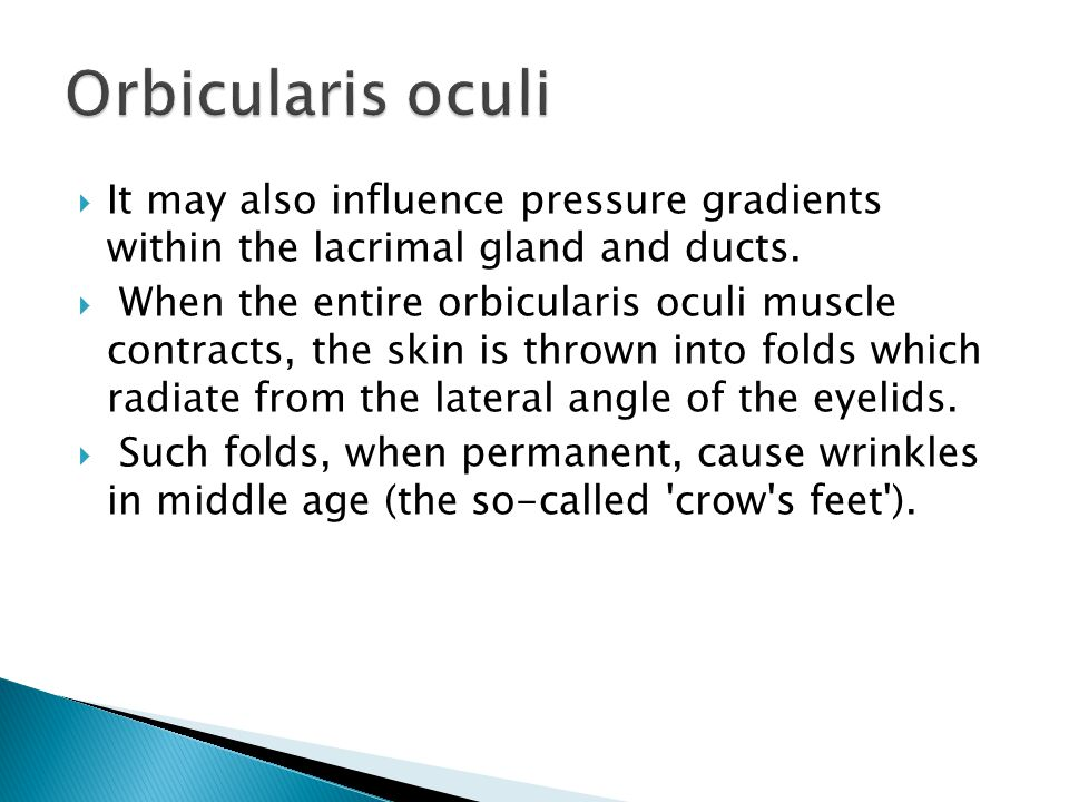 Orbicularis oculi It may also influence pressure gradients within the lacrimal gland and ducts.