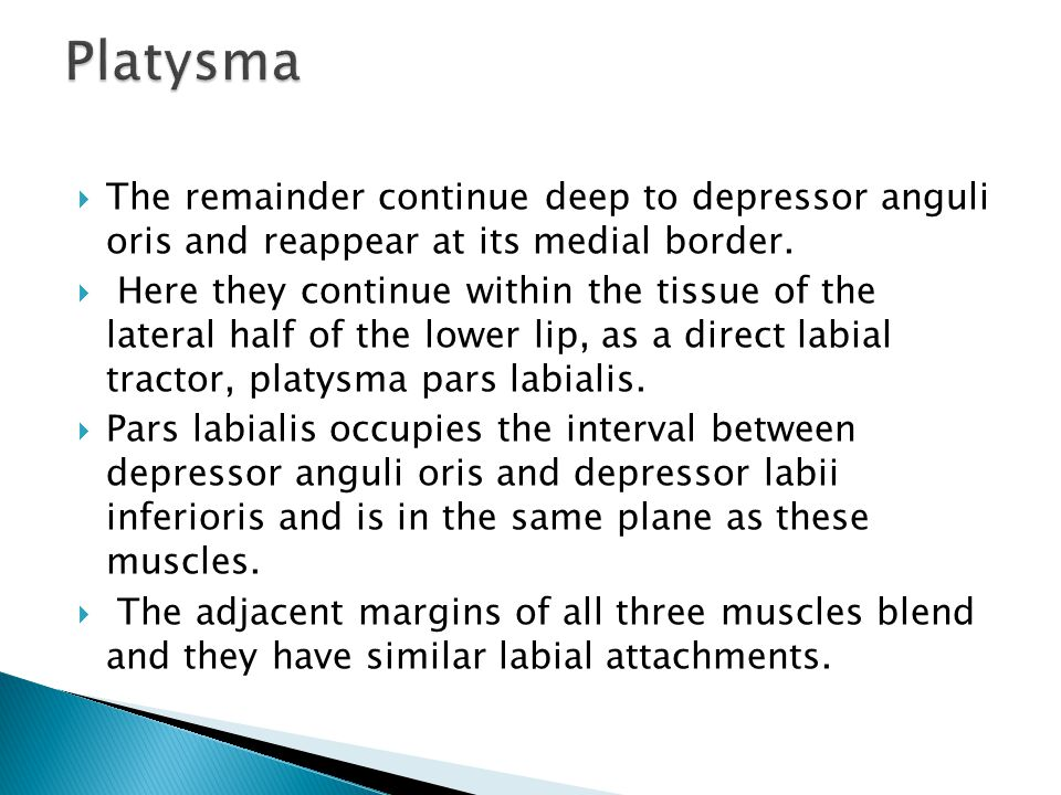 Platysma The remainder continue deep to depressor anguli oris and reappear at its medial border.