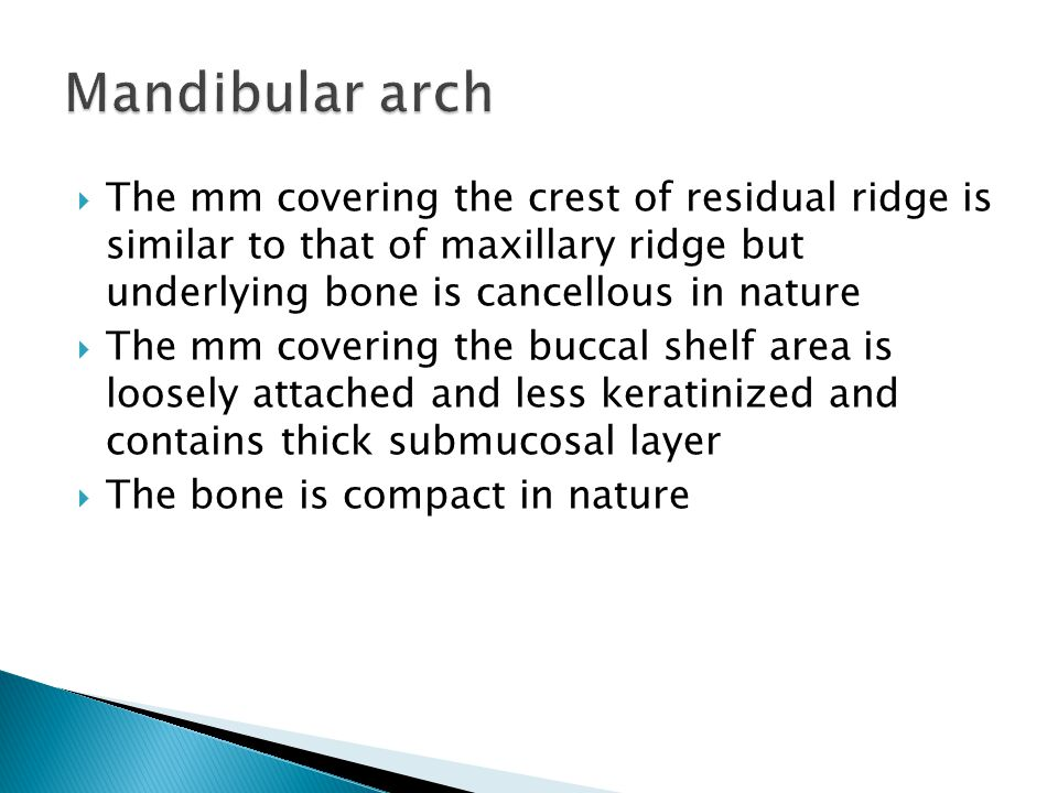 Mandibular arch The mm covering the crest of residual ridge is similar to that of maxillary ridge but underlying bone is cancellous in nature.