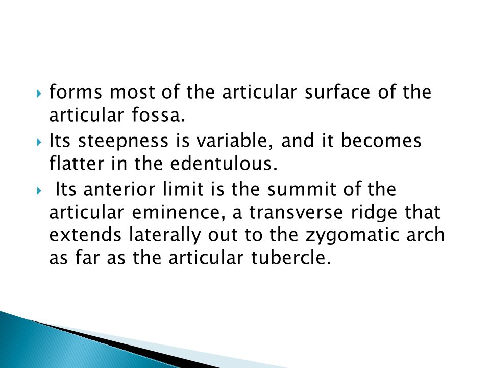 forms most of the articular surface of the articular fossa.