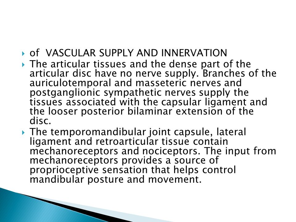 of VASCULAR SUPPLY AND INNERVATION