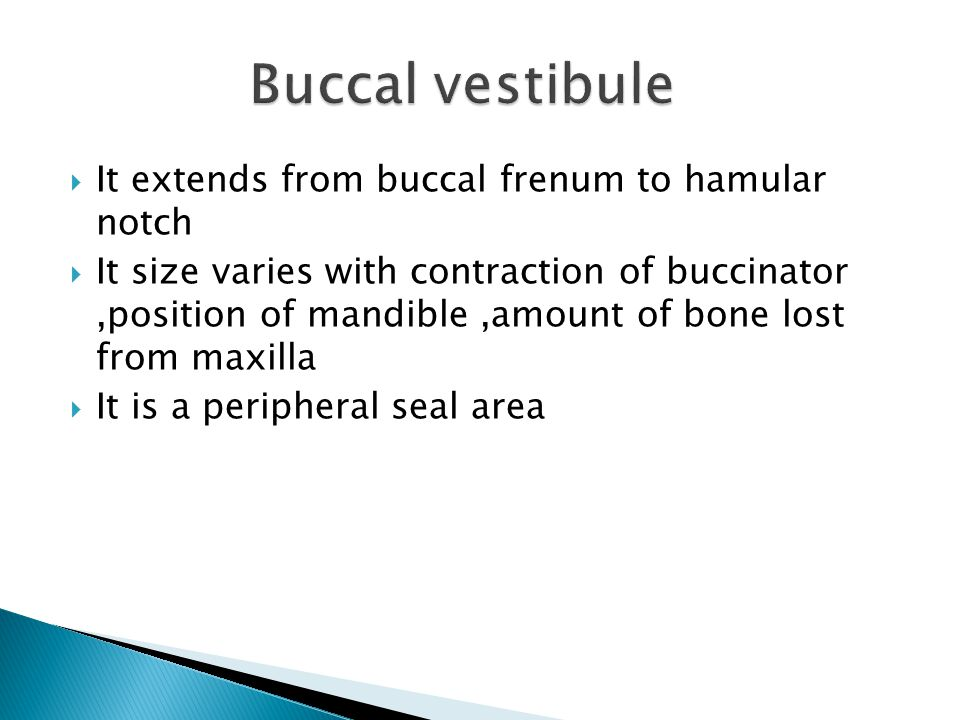 Buccal vestibule It extends from buccal frenum to hamular notch