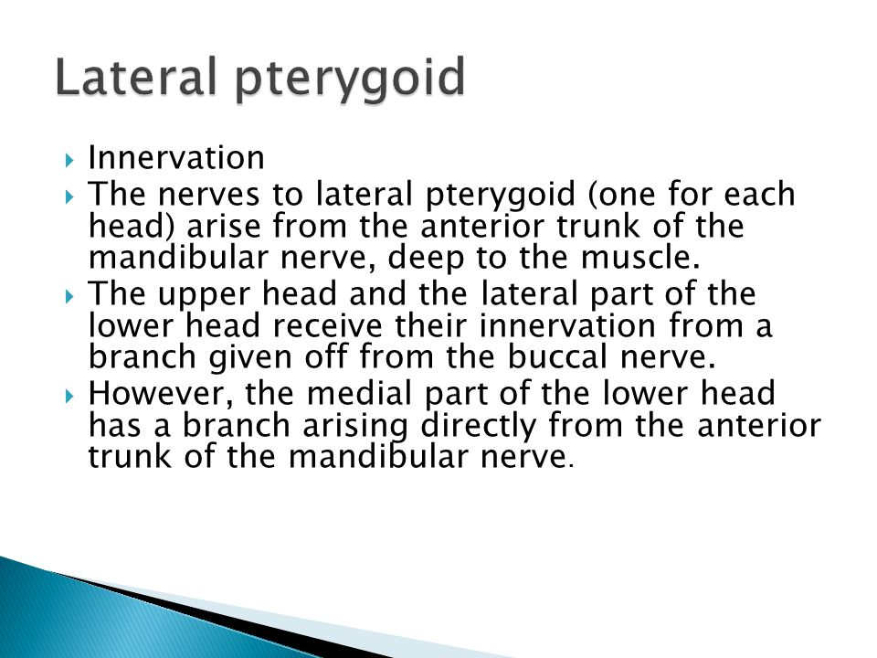Lateral pterygoid Innervation