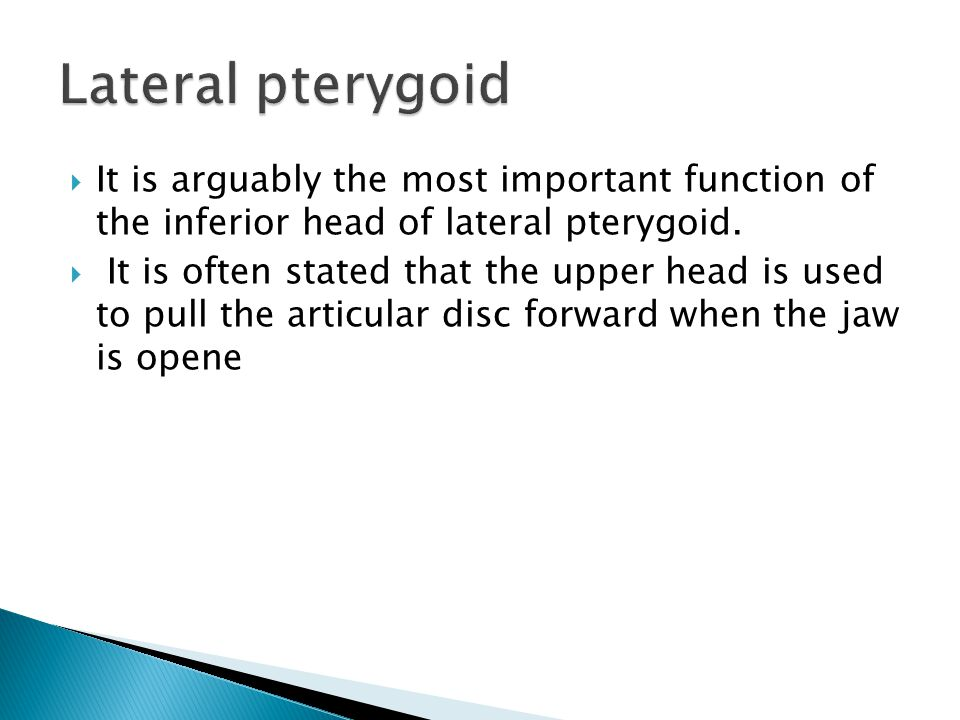 Lateral pterygoid It is arguably the most important function of the inferior head of lateral pterygoid.