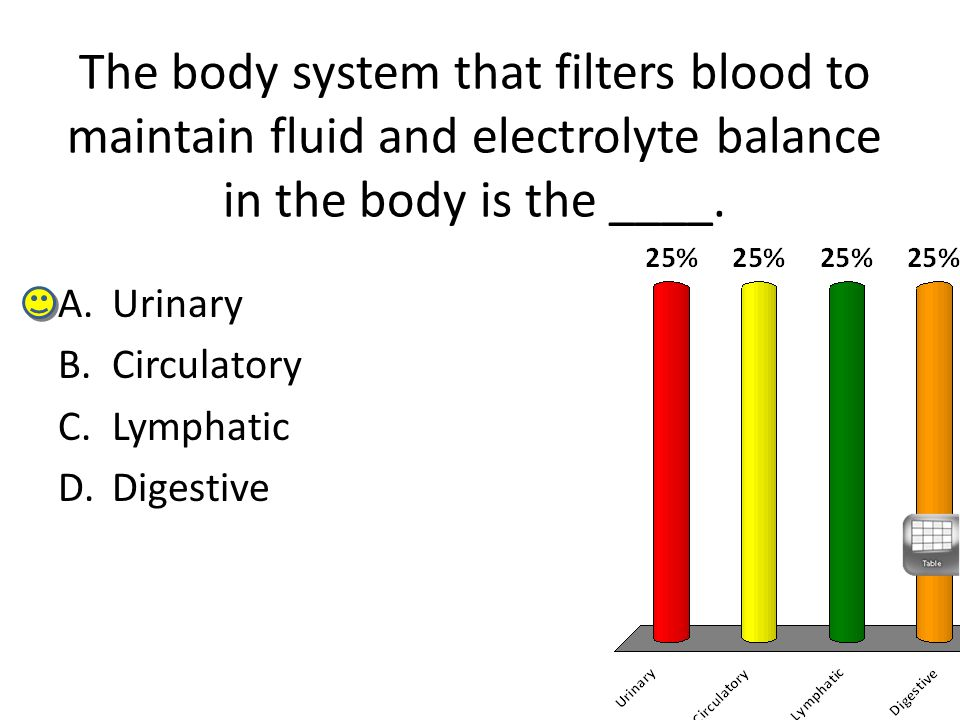 The body system that filters blood to maintain fluid and electrolyte balance in the body is the ____.