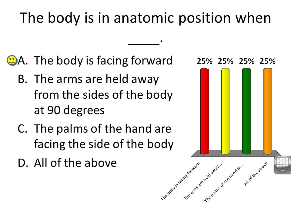The body is in anatomic position when ____.
