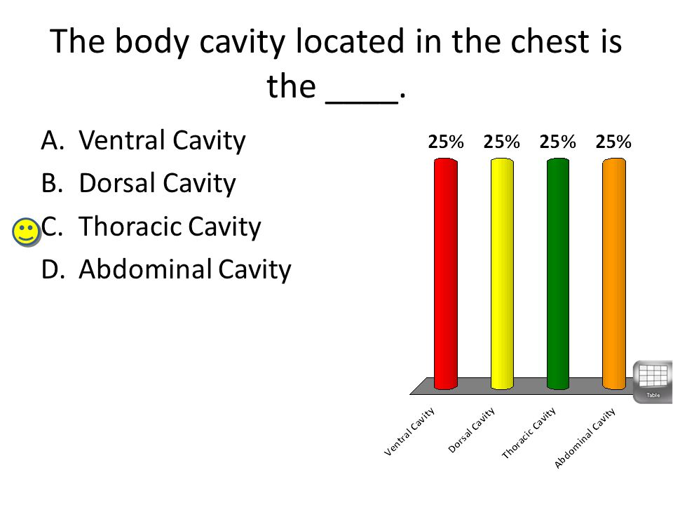 The body cavity located in the chest is the ____.