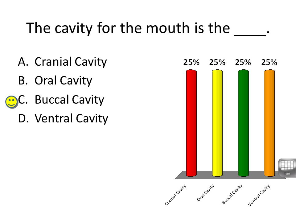The cavity for the mouth is the ____.