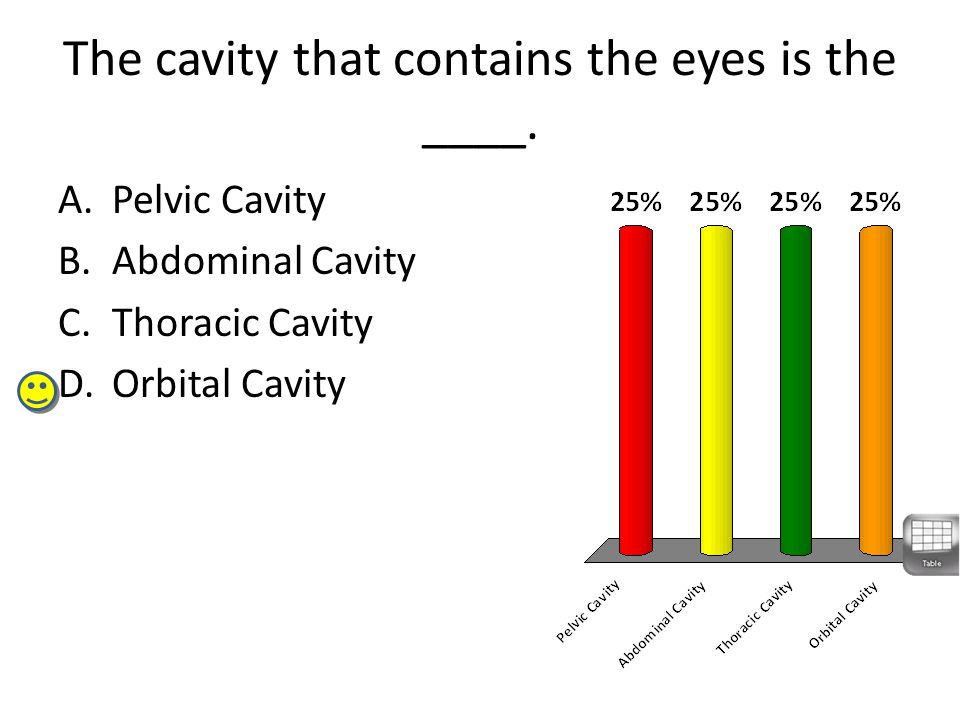 The cavity that contains the eyes is the ____.