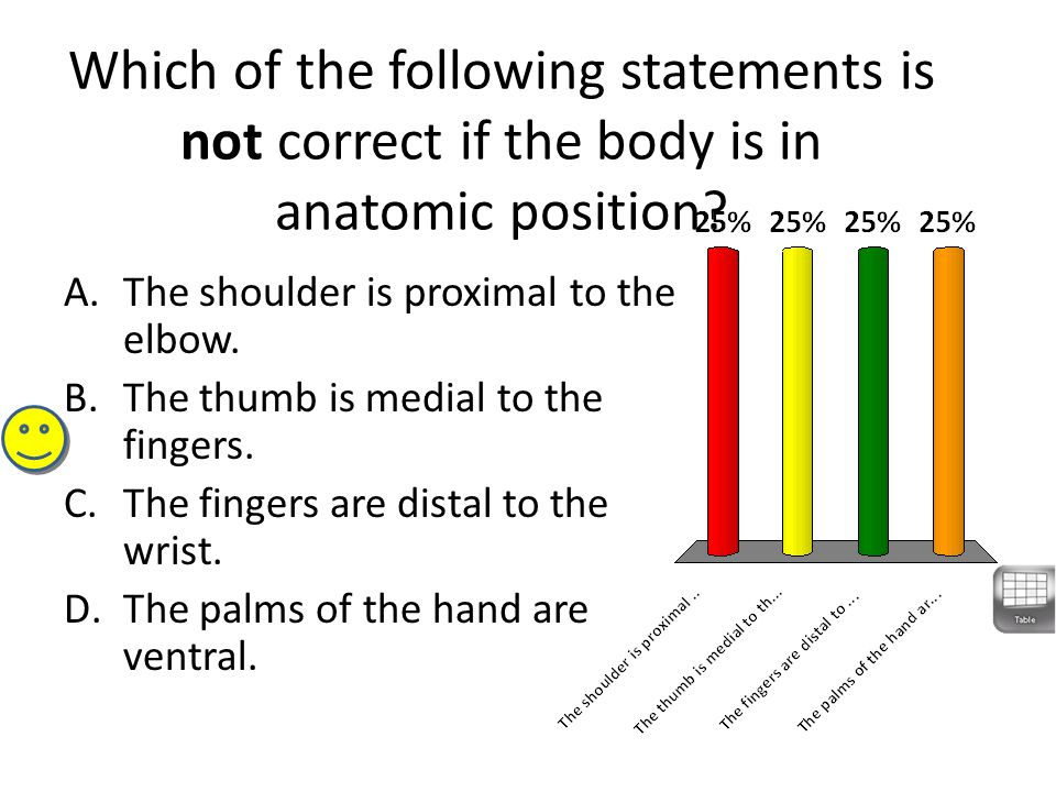 Which of the following statements is not correct if the body is in anatomic position