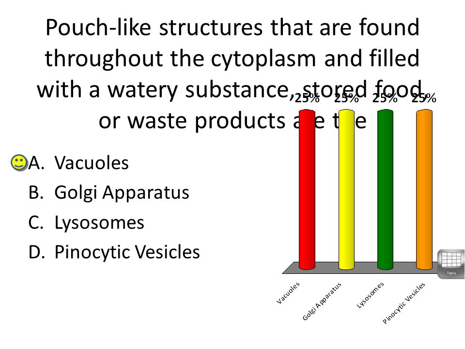 Pouch-like structures that are found throughout the cytoplasm and filled with a watery substance, stored food, or waste products are the