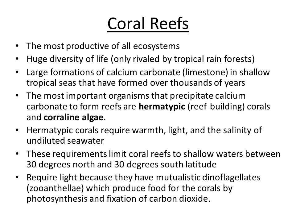 Coral Reefs The most productive of all ecosystems