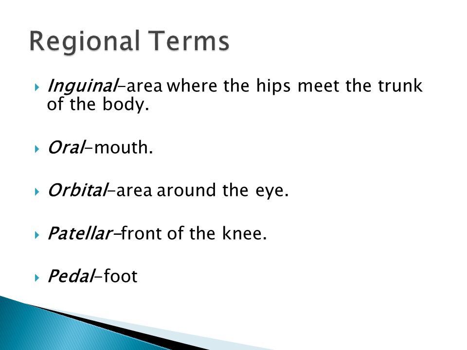 Regional Terms Inguinal-area where the hips meet the trunk of the body. Oral-mouth. Orbital-area around the eye.