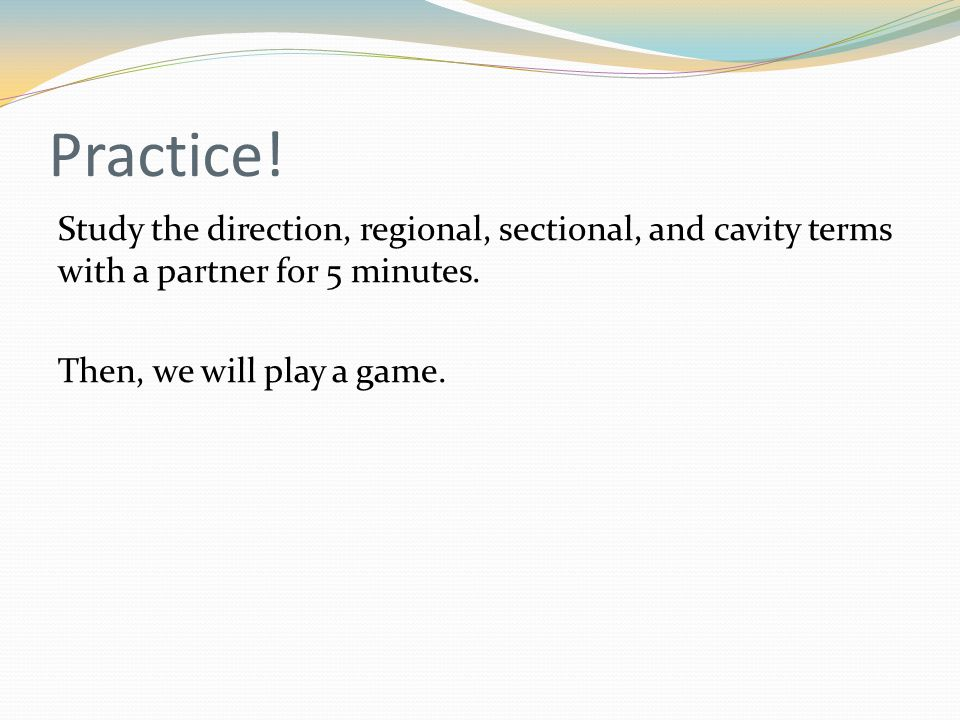 Practice. Study the direction, regional, sectional, and cavity terms with a partner for 5 minutes.
