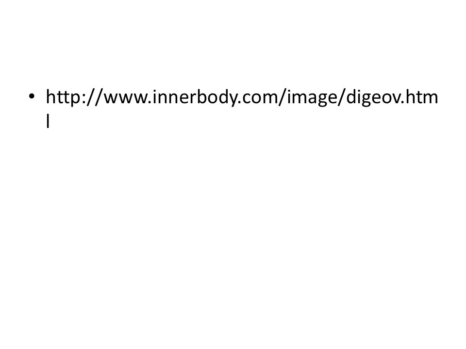 http://www.innerbody.com/image/digeov.html