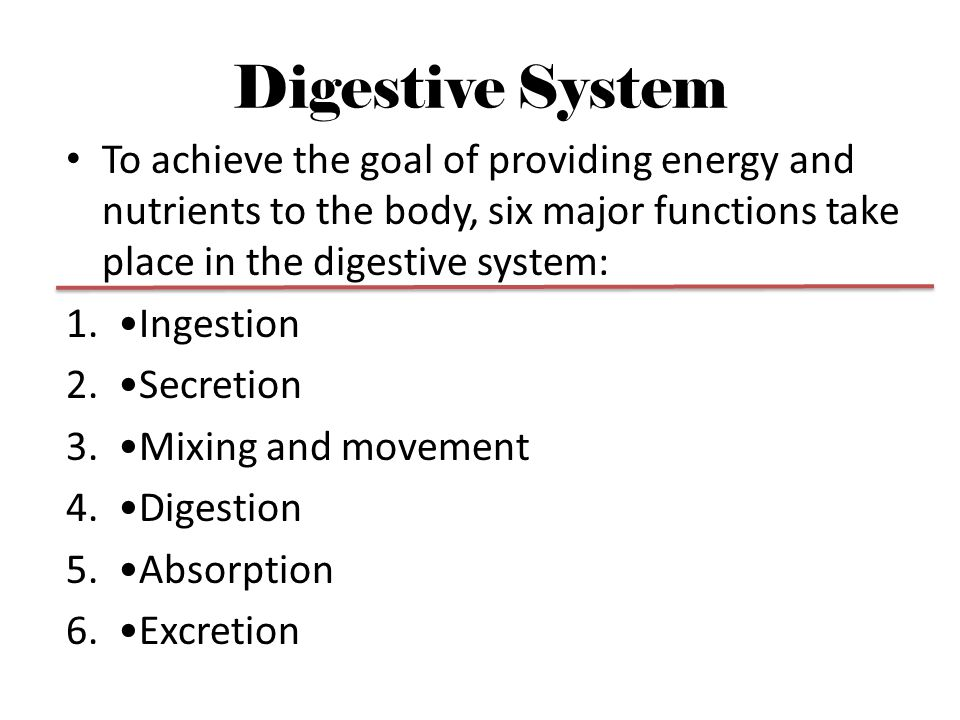 Digestive System To achieve the goal of providing energy and nutrients to the body, six major functions take place in the digestive system: