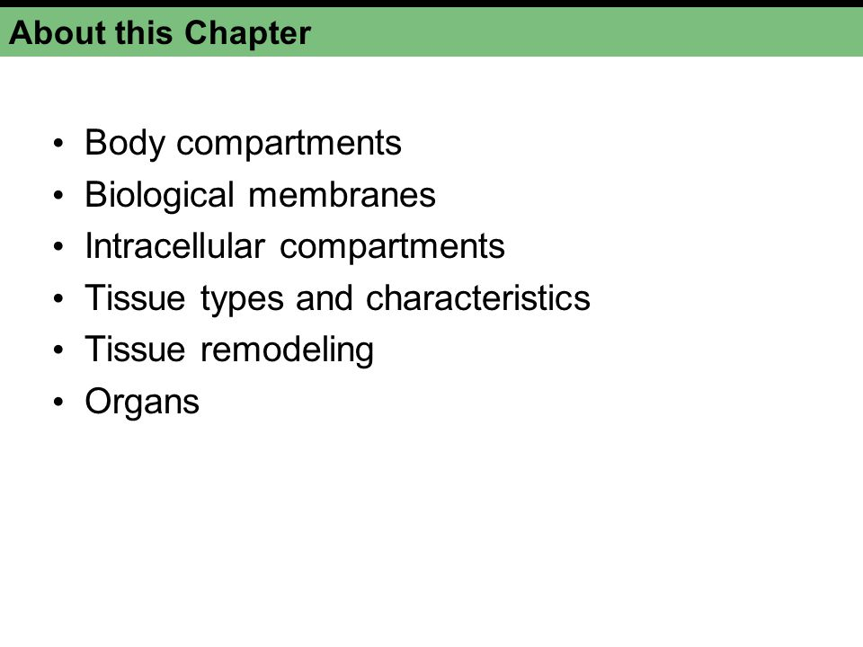 Intracellular compartments Tissue types and characteristics