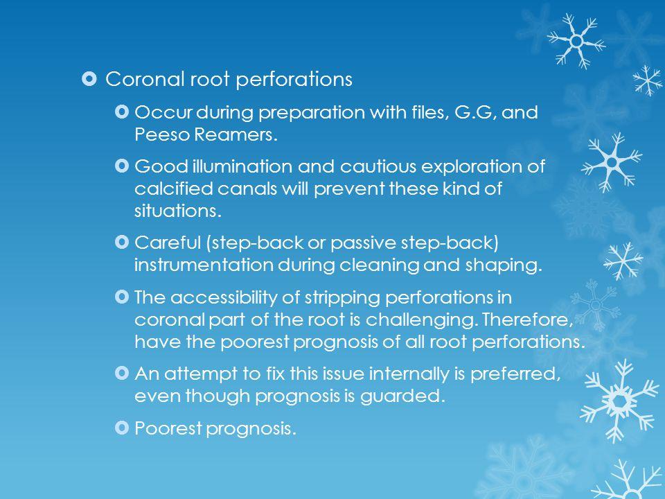 Coronal root perforations