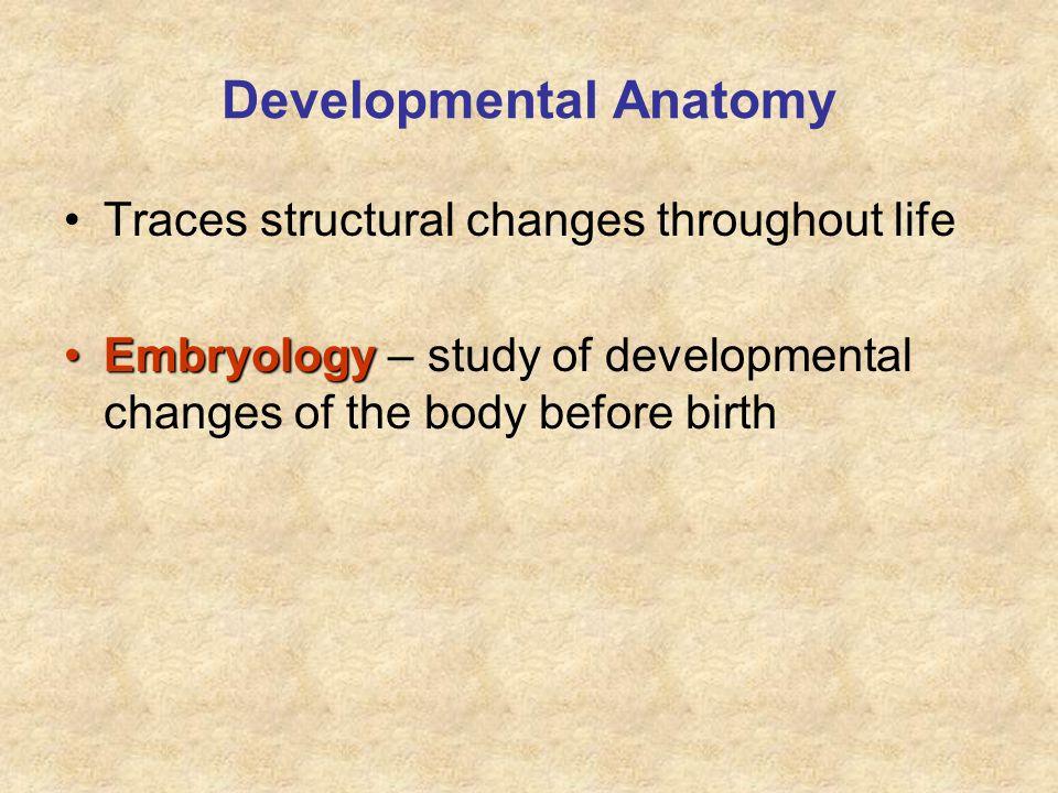 Developmental Anatomy