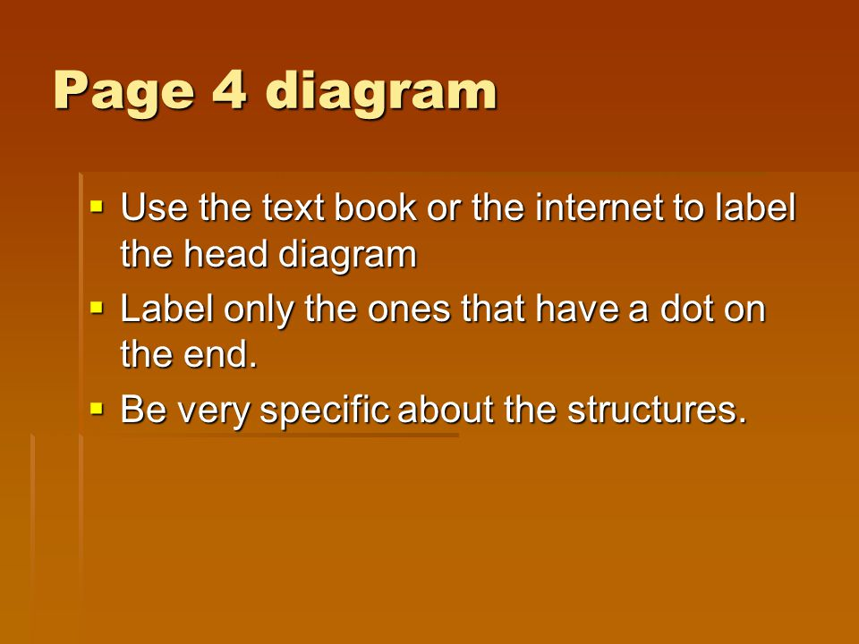 Page 4 diagram Use the text book or the internet to label the head diagram. Label only the ones that have a dot on the end.